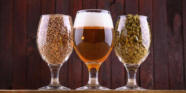 Как дегустировать пиво